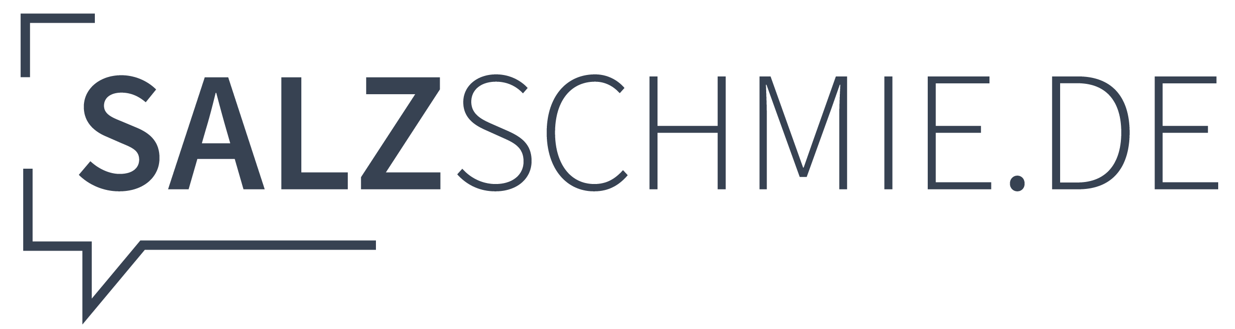Logo_Salz_blau